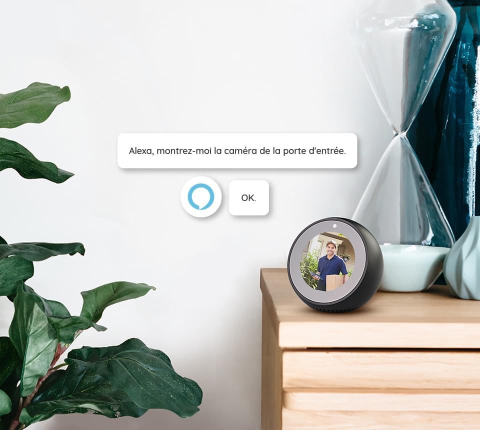 Caméra de Surveillance Compatible avec Alexa