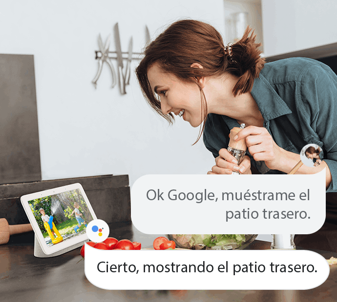 Cámara de Seguridad con Google Assistant