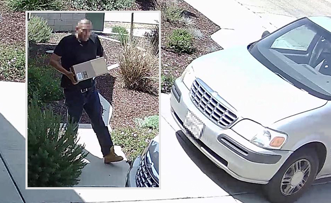 Reolink Camera Caught Package Theft