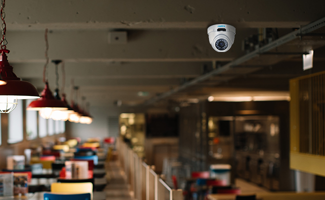 Ceiling Security Camera