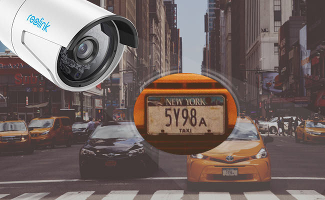 License Plate Security Cameras