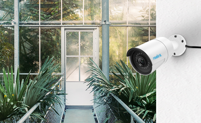 Security Camera In Grow Room