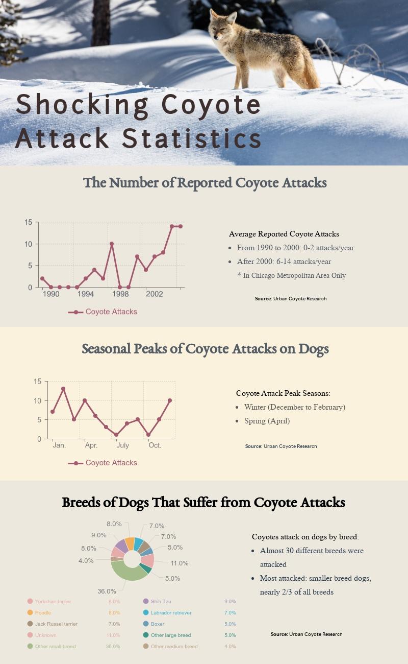 Coyote Attack Statistics