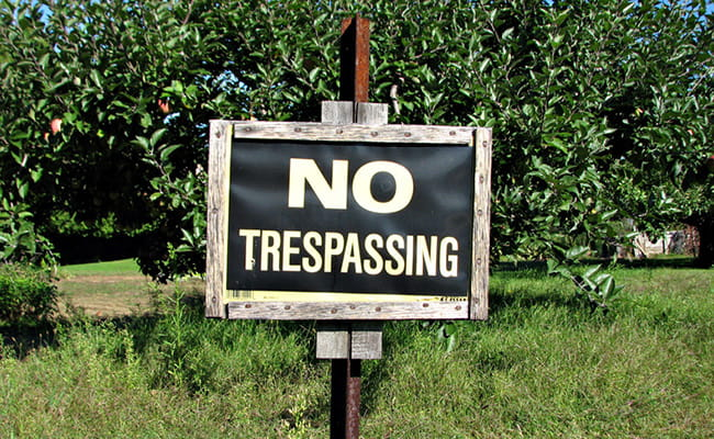 No Trespassing Sign on the Lawn