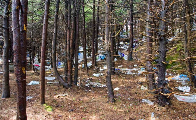 Stop Illegal Dumping on My Property